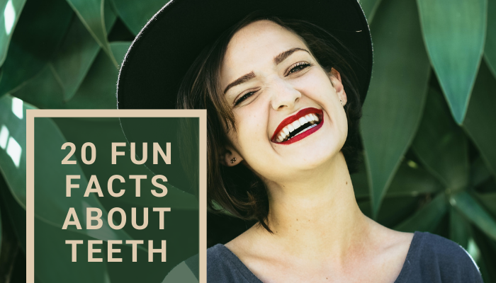 20 Fun Facts About Teeth